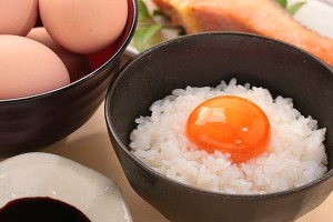 egg_1WEB